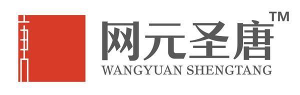 北京网元圣唐娱乐科技有限公司